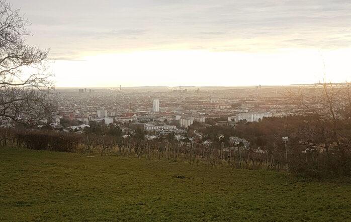 Diesmal möchte ich Dir gerne eine Runde am Rande des 16. und 17. Wiener Bezirkes vorstellen. Von Dornbach geht es den Wilhelminenberg rauf, weiter zur Kreuzeichenwiese und zurück über Neuwaldegg.
